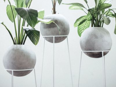 Design: betonowe donice